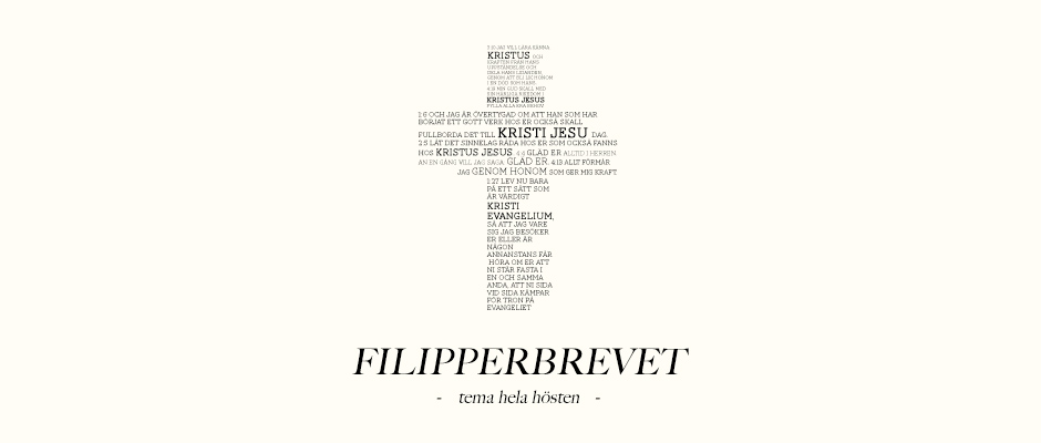 FILIPPERBREVET_web